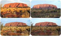 the colours of Uluru. (misty1925) Tags: sunset collage outback uluru northernterritory picmonkey:app=collage