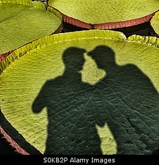 Uploaded to Stockimo (mlovette) Tags: gay friends shadow male men love garden couple lily pad silhouettes talking selfie selfies stockimo