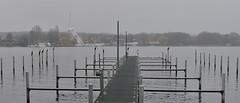 scharfe lanke  berlin spandau (poetensteig) Tags: november berlin nebel grau regen havel spandau lanke bootssteg scharfe