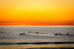 """Nature does nothing in vain....."" (jenni 101) Tags: ocean sunset beach colourful southaustralia glenelg kayaks sillohuettes"