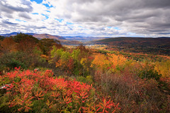 Spectacular View of Autumn Foliage at Berkshire, MA *explored* (Apricot Cafe) Tags: autumn america ma drive us driving unitedstates outdoor hiking weekend massachusetts autumnleaves foliage northadams mohawktrail canonef1635mmf28liiusm wigwamwesternsummit img624445