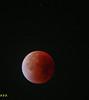 Blood red moon (P.P.P ( point - press - pray )) Tags: nightphotography moon nightsky redmoon bloodred supermoon