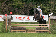 DSC01295_s (AndiP66) Tags: springen derby wohleiberg derbywohleiberg bern samstag saturday 3oktober2015 2015 oktober october pferd horse schweiz switzerland kantonbern cantonofbern concours contest wettbewerb horsejumping springreiten pferdespringen equestrian sports pferdesport sport sony sonyalpha 77markii 77ii 77m2 a77ii alpha ilca77m2 slta77ii sony70400mm f456 sony70400mmf456gssmii sal70400g2 andreaspeters frauenkappelen ch