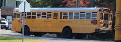 Brewster CSD #273 (ThoseGuys119) Tags: schoolbus icce icre brewsterny icfe bluebirdallamerican leonardbussales brewstercsd