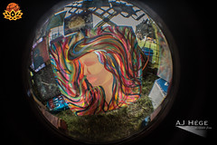 Earthdance Florida 2015 (AJ Hége Photography) Tags: color art face canon painting hair fun community colorful paint day florida vibrant review fisheye event talent article earthdance lakeland 2015 opteka 60d furtographer newsource maddoxranch ajhegephotography ajhégephotography cosmiccollectiveart earthdanceflorida