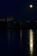 Urban Moonlight Reflections (20151125-172844-PJG) (DrgnMastr) Tags: moon bravo dusk moonrise moncton processed diamondclassphotographer flickrdiamond citritgroup damniwishidtakenthat dmslair grouptags allrightsreserveddrgnmastrpjg pjgergelyallrightsreserved happenedonenight