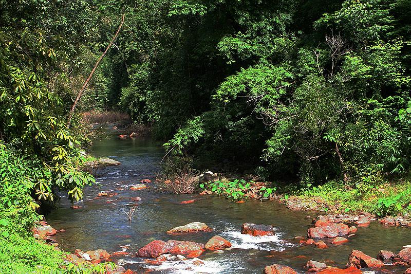 Vườn quốc gia Sri Phang Nga