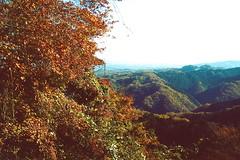 高尾山_16 (Taiwan's Riccardo) Tags: 2016 japan tokyo 135film fujifilmrdpiii transparency color plustek8200i rangefinder 日本 東京 zeissikoncontessa35 tessar fixed 45mmf28 高尾山 八王子 2016tokyovacation