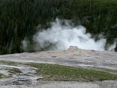 Upper Geyser Basin #21 (jimsawthat) Tags: geyser thermalfeature rural wyoming uppergeyserbasin yellowstonenationalpark