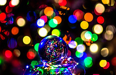 Bokeh Christmas (Wolf_UrbanXposure) Tags: bokeh bokehlicious bokehholics bokehphotography bokehlights bekehlovers crystalball nightphotography nightshots nightshooters nightimages night christmas xmas christmaslights lights colors d7200 stl saintlouis stlouis stlphotographer missouriphotographer nikon 85mm noflash bestshots bestshot amazingshot depth fairylights nightcrawlers nightwalkers nightexplorers nightshot nightlife urban flickr trickphotography amature wolfurbanxposure holidays