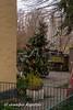 Weihnachten im Garten (Bernsteindrache7) Tags: winter sony alpha 100 color city outdoor landscape düsseldorf germany nrw tree build