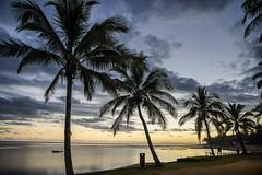 Naviti beach on sunset (TimoOK) Tags: fiji fidzi meri sea palmu palm sunset auringonlasku puu tree beach ranta