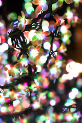 All of the lights! 17 (DVchigarev) Tags: bright lights shadows canon 70d 35mm sigma 14 bokeh colors hello smooth sochi russia dream party night flickr bokehlicious flowers centre town city all 2017 newyear christmas eos