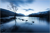 Llyn Padarn, Snowdonia (MarkLG1973) Tags: clouds lake lonetree mountains reflection snowdonia sunrise tree wales atmospheric background cold isolated landscape llanberis llyn llynpadarn moody mountain national nature north over padarn park scenic sky tranquil tranquility trees uk view water winter