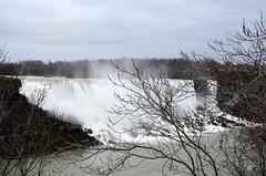 American Falls Through The Trees [Niagara Falls - 3 January 2016] (Doc. Ing.) Tags: 2015 canada ontario on winter northamerica niagarafalls water river waterfall americanfalls landscape