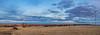 Christmas Sunset (Anthony's Olympus Adventures) Tags: adelaide adelaideplains southaustralia sa australia christmas sunset cloud sky colour sun wow nice beautiful stunning xmas freeling farm country paddock landscape panorama panoramic scene blue olympusem10 olympus olympusomd sundown farmland flickrheroes