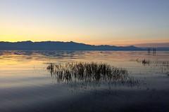 Lake Shkodra