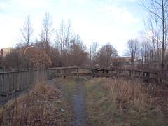 DSCN5109 (TajemniczaIstota761) Tags: abandoned railway viaduct wiadukt kolejowy