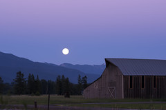 Montana Moonrise (synaesthesia24) Tags: landscape moon sunset moonrise twilight bluehour fullmoon thundermoon buckmoon barn mountains rockies rockymountains flathead valley dusk kalispell montana nature summer nikon d810 zeiss carlzeiss zf2 sonnar2135 sonnar135 swanrange