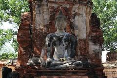 statue of Buddha, Wat Mahathat, Ayutthaya (raffaele pagani) Tags: parcostoricodiayutthaya phranakhonsiayutthaya พระนครศรีอยุธยา thailandia thailand unesco unescoworldheritagesite unescopatrimoniomondialedellumanità patrimoniodellunesco patrimoniomondialedellumanità canon