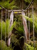 """Suspension bridge • <a style=""""font-size:0.8em;"""" href=""""http://www.flickr.com/photos/44919156@N00/32284788710/"""" target=""""_blank"""">View on Flickr</a>"""