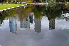 Reflections (antonio.sganzerla) Tags: australia sydney grattacieli specchio pozzanghera