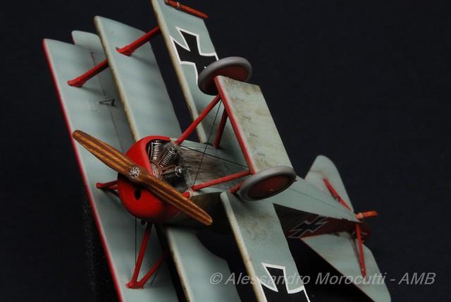 Fokker DR.I (18)