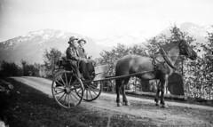 Horse and carriage, ca. 1915-1925. (Fylkesarkivet i Sogn og Fjordane) Tags: norway noreg norge sognogfjordane sunnfjord olaifauske jølster lake horse carriage road men jølstravatnet