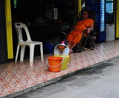 ,, Angel Eyes ,, (Jon in Thailand) Tags: streetphotography street streetphotographyjunglestyle jungle dog k9 angeleyes cone conehead spayed spayneuter monkeytemple nikon d300 nikkor 175528 monk headmonk yellow blue orange bucket waterbucket chair whiteplasticchair thaimonk