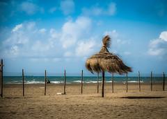 Vento in spiaggia (Patty - ♥) Tags: ombrellone spiaggia vento