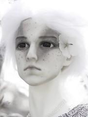 White as Snow (zoziebrown) Tags: white photoshop photoshopped alien elf fairy bjd abjd balljointeddoll dollshe resindoll venitu 5thmotif fifthmotif 5thmotifvenitu snowpale