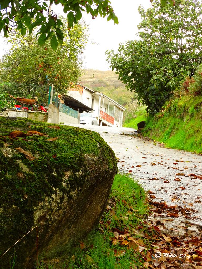 Águas Frias (Chaves) - ...caminho ... para ir e voltar ...