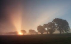 What's that coming over the hill... (Stuart Stevenson) Tags: uk autumn trees mist sunrise photography scotland countryside scottish valley rays hillside sunbeams colourfull clydevalley stuartstevenson appicoftheweek scotlandsunburst