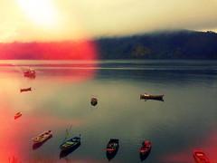 ríos y mares libres ! (Felipe Smides) Tags: mar ríos amar mares pescadores valdivia fotografía caleta libres smides felipesmides