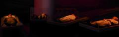 Shen Shaomin - Summit (Steve Taylor (Photography)) Tags: china stilllife brown black men art museum dark dead singapore asia wake cuba korea eerie vietnam spooky castro fidel summit lowkey formerpresident hochiminh maozedong singaporeartmuseum shenshaomin aejandro kimiisung