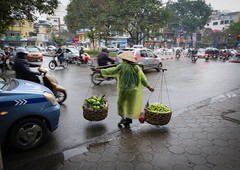Stepping fearlessly in to the maelstrom (warryronin) Tags: street city urban cars tourism fruits rain yellow person cityscape traffic culture pedestrian tourist vietnam busy peddler motorbikes bold