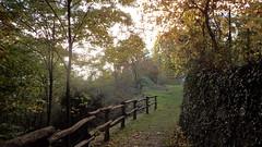 Capodiponte 4 (sandra_simonetti88) Tags: italien italy way strada italia autunno lombardia italie valcamonica vallecamonica capodiponte incsionirupestri