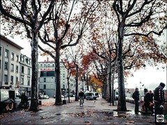 Automne Urbain (nobru2607) Tags: lyon 28mm streetphotography ricoh grd3 grdiii