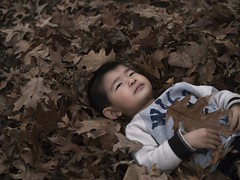 Bed of leaves (ChiliTofu) Tags: autumn leaves childhood innocent relaxing playful