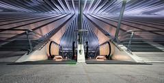 The future is....now (Alex Switzerland) Tags: liege liegi belgique belgium belgio stazione station bahnhof architecture architettura lines canon eos 6d