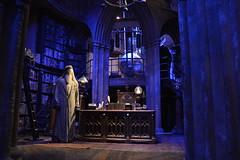 DSC_0389 (SherryFlox) Tags: wonderful wand harrypotter wizard dumbledore snape hermione gryffindor ron voldemort tour warnerbros london kingscross amazing gorgeous christmas