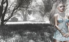 "Look#242 - ""Angel"" (LoneSolitarian) Tags: second life secondlife sl virtual dark light shadow art firestorm gimp photography windlight photo sim 3d lumipro female woman feminine girl human avatar people beauty model charm lovely attractive fashion lone blonde nature landscape scenery romance serene frisland liebe winter snow"