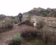 037 The Control Should Be Around Here Somewhere (saschmitz_earthlink_net) Tags: 2017 california orienteering vasquezrocks aguadulce losangelescounty laoc losangelesorienteeringclub