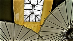 Skylight and Parasols (Version 2) (sswj) Tags: abstractreality abstraction skylight parasols sangregoriostore sanmateocounty northerncalifornia california composition existinglight availablelight scottjohnson dlux4 leica architecturaldetail