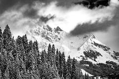 marbachhöhe (bernd.kranabetter) Tags: winter skitour dienten am hochkönig marbachhöhe grünkögerl schnee kalt cold