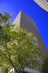 No Parachute (swong95765) Tags: skyscrapper buildings city man jump jumper freefalling sky gravity perspective upshot