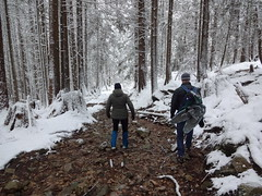 Stream route (mag3737) Tags: snow woods forest fromme mtfromme stream
