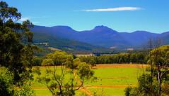 The HUON VALLEY (Lani Elliott) Tags: scene scenic scenictasmania view mountains sleepingbeauty meadow paddock haystacks hay field gold golden australia tasmania nature naturephotography huon huonvalley valley