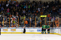 "Missouri Mavericks vs. Quad City Mallards, January 21, 2017, Silverstein Eye Centers Arena, Independence, Missouri.  Photo: John Howe / Howe Creative Photography • <a style=""font-size:0.8em;"" href=""http://www.flickr.com/photos/134016632@N02/32487053826/"" target=""_blank"">View on Flickr</a>"