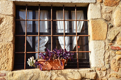 Secrets (angelsgermain) Tags: window curtains bars grille flowerpot plant stone house traditional closed village castelldaro baixempordà catalonia catalunya
